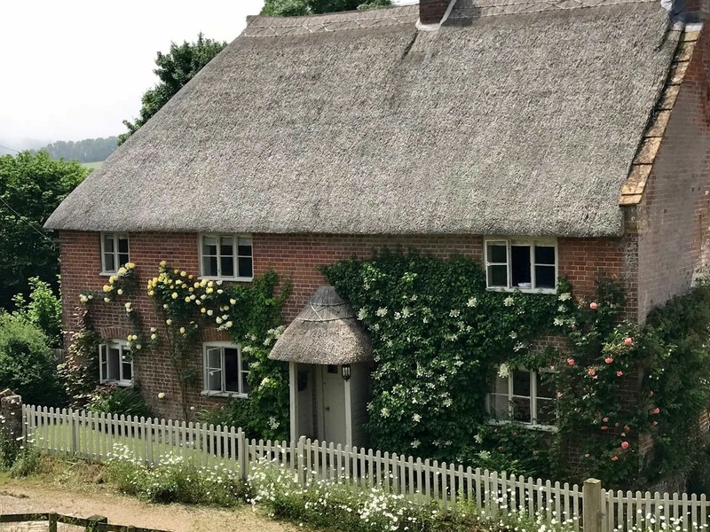 Thatched Cottage Dorset