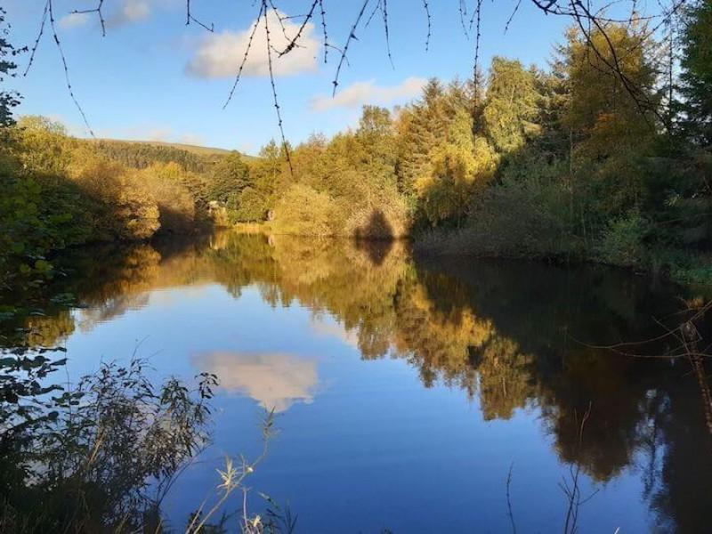 Ravenbridge Mill