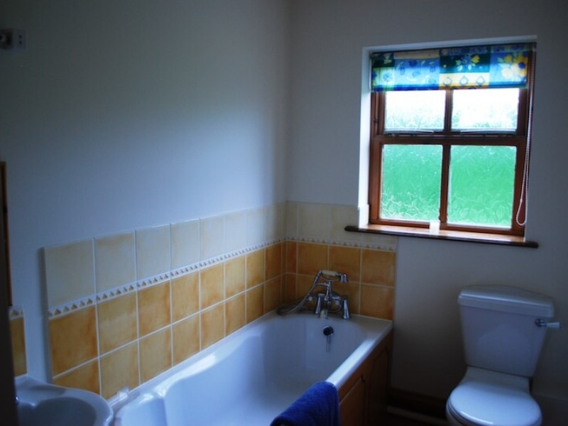 The Felbrigg family bathroom