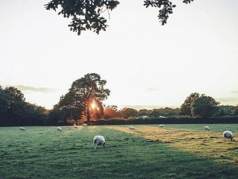 The Barn At Green Farm Barn