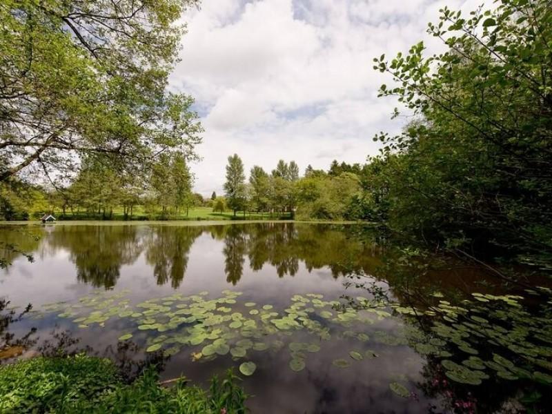 Lakes Edge