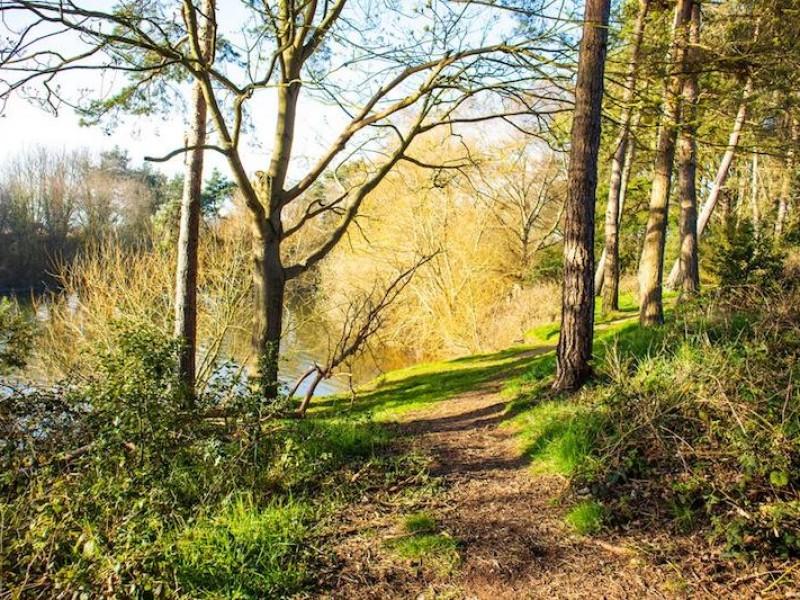 Alton Water Trails