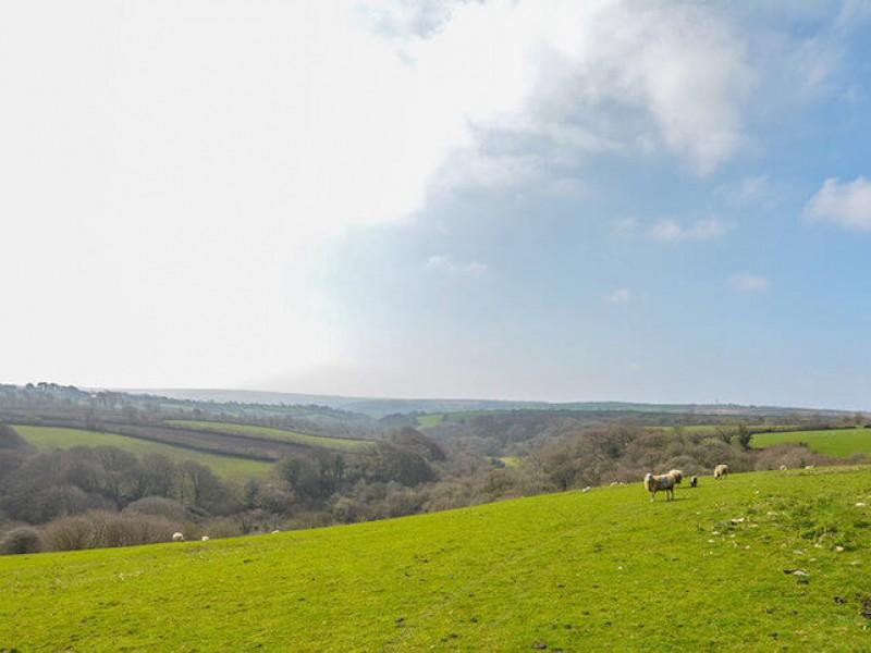 Goosehill At Penrose Burden