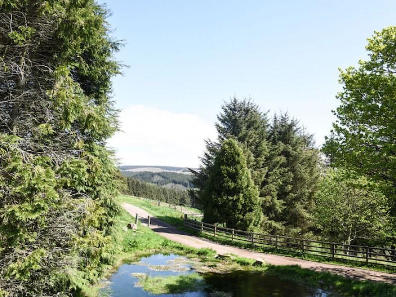 Leyland Barn At Kidlandlee