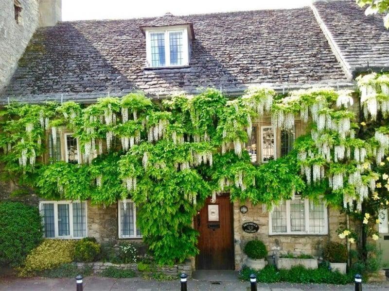 Providence Cottage