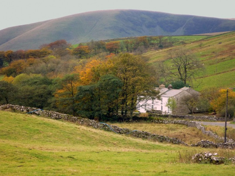 Sandbed Cottage from the fell