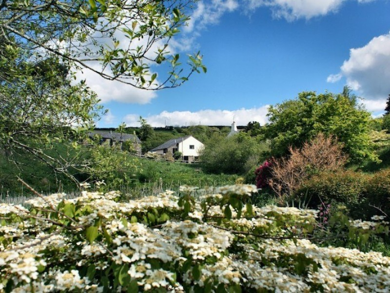 Willows Cottage At Dittiscombe Holiday Cottages