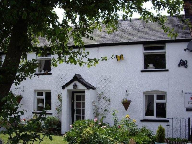 Ty Gwyn Cottage