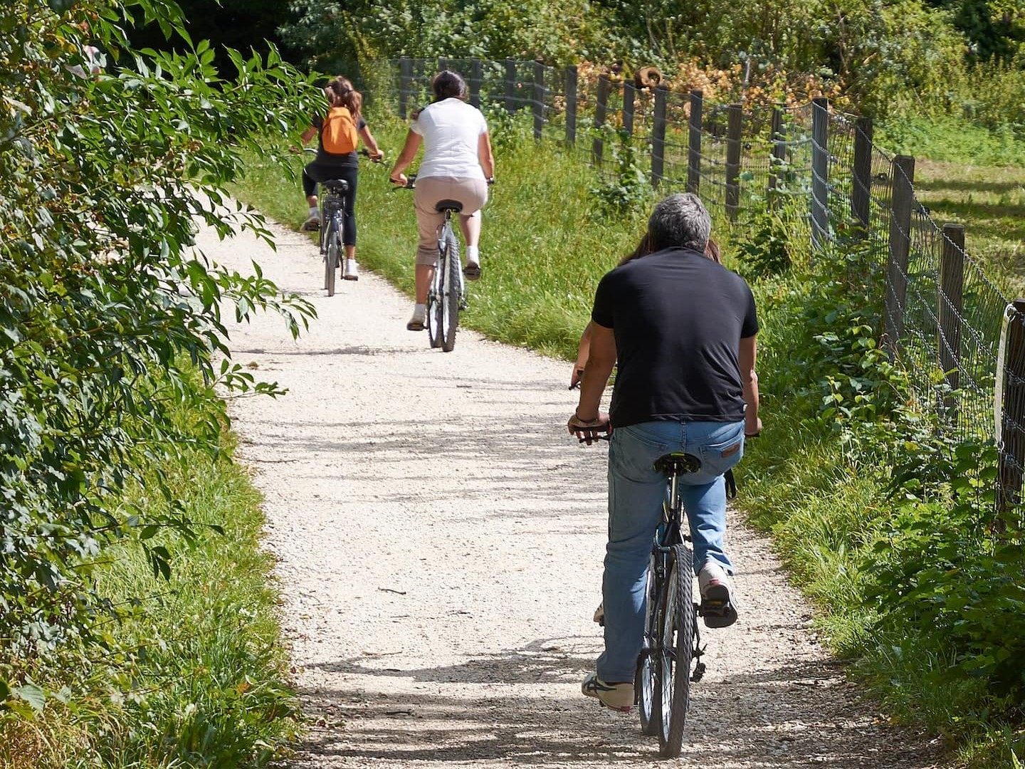 Cycle Trails In The Area