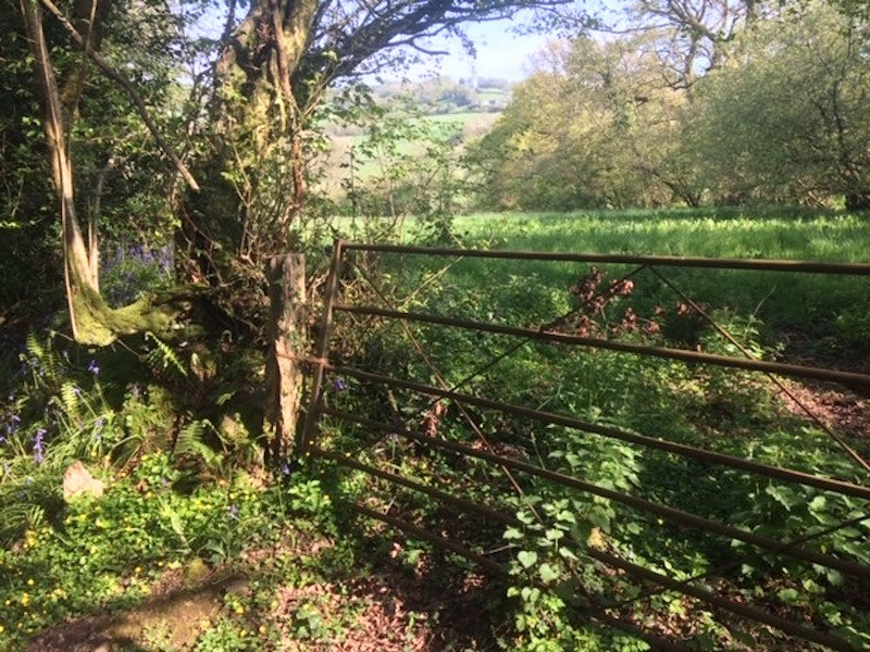 Upottery, Devon