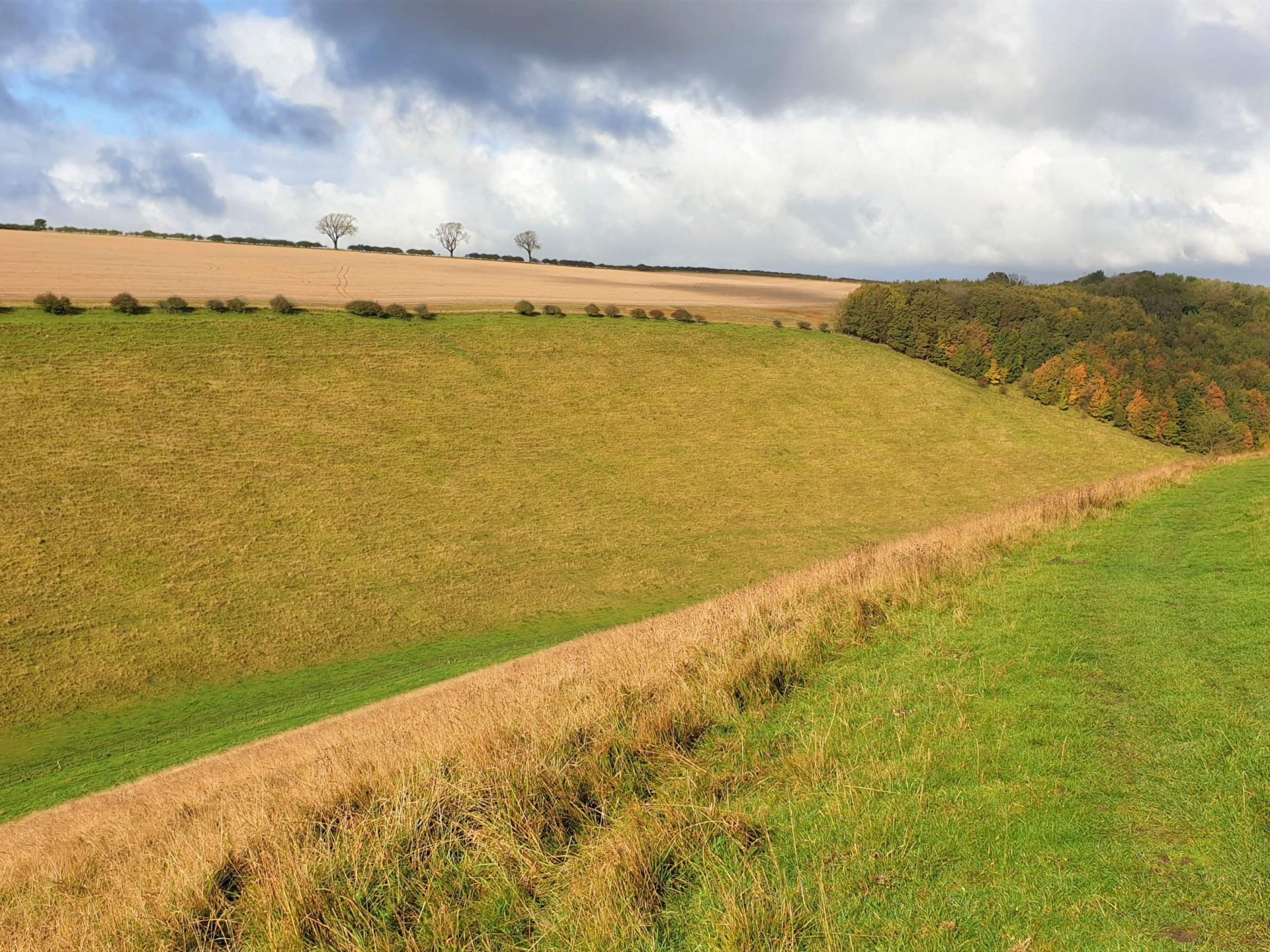 Walk the Yorkshire Wolds