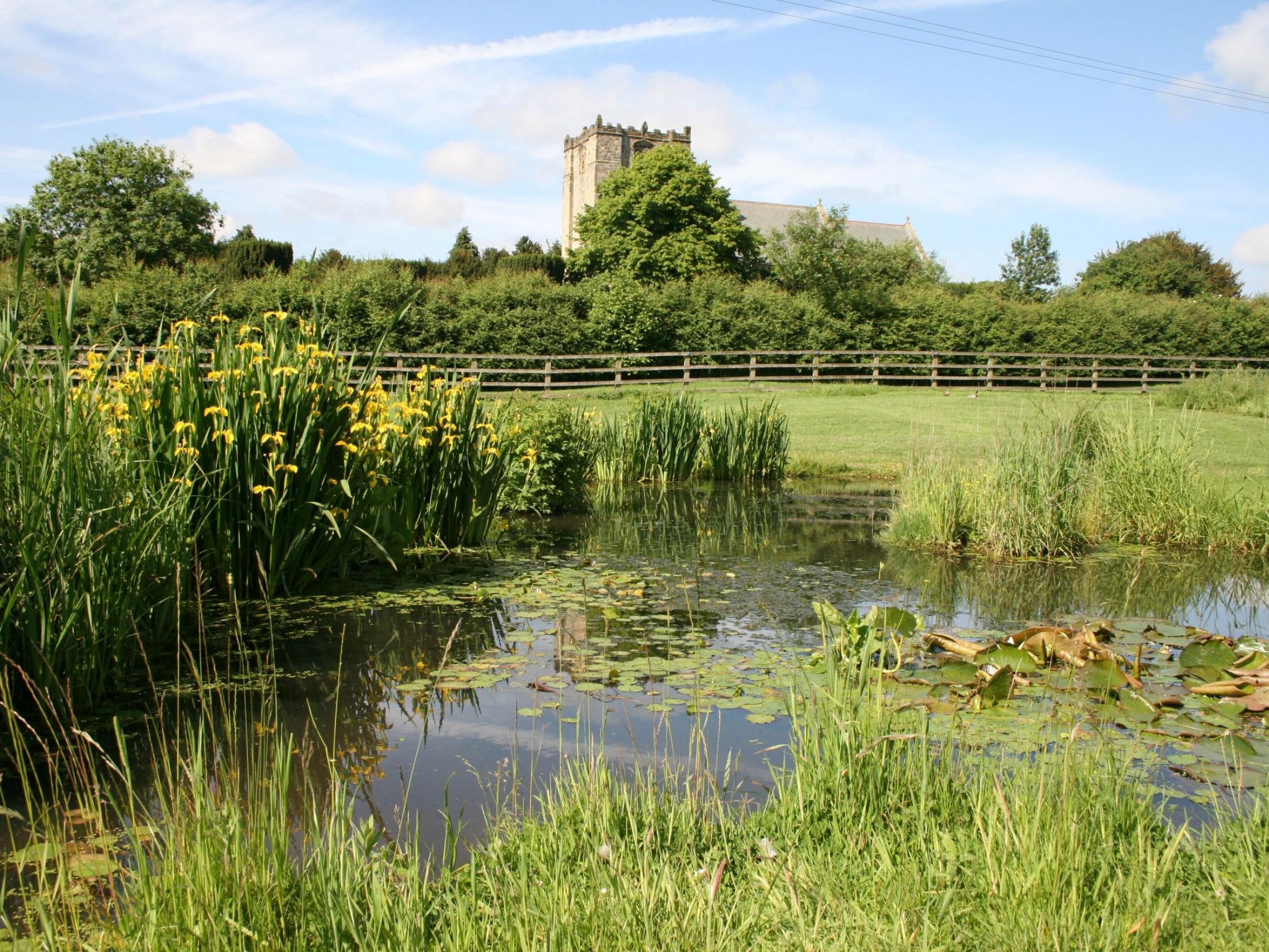 Our wildlife pond & village church