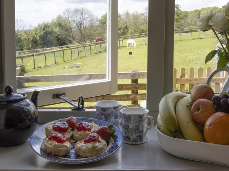 Great views from Swingletree
