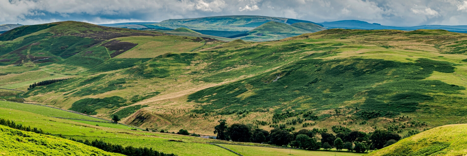 Luxury Cottages in the Cheviots