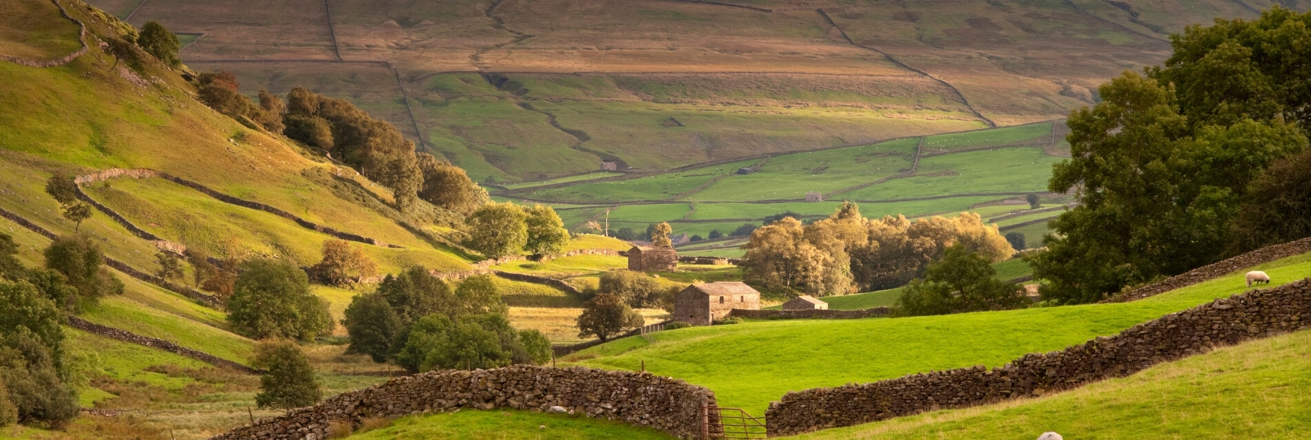 North East England Luxury Cottages